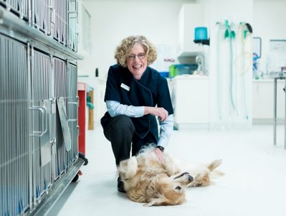 Veterinary Specialist joins Channel Highway and Hobart Animal Hospitals